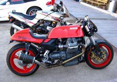 IMG 1320